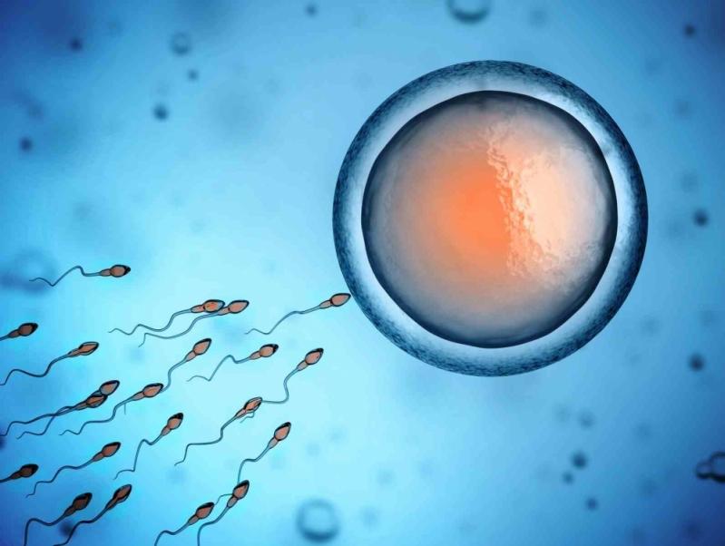 Clínica de Inseminação Artificial Cursino - Centro de Reprodução Humana