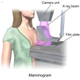 consulta ginecologista para tratamento na mama agendar Lapa
